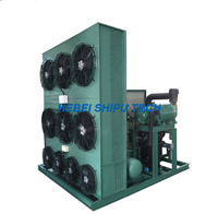 Bitzer Condensing Unit Cold Room China Manufacture